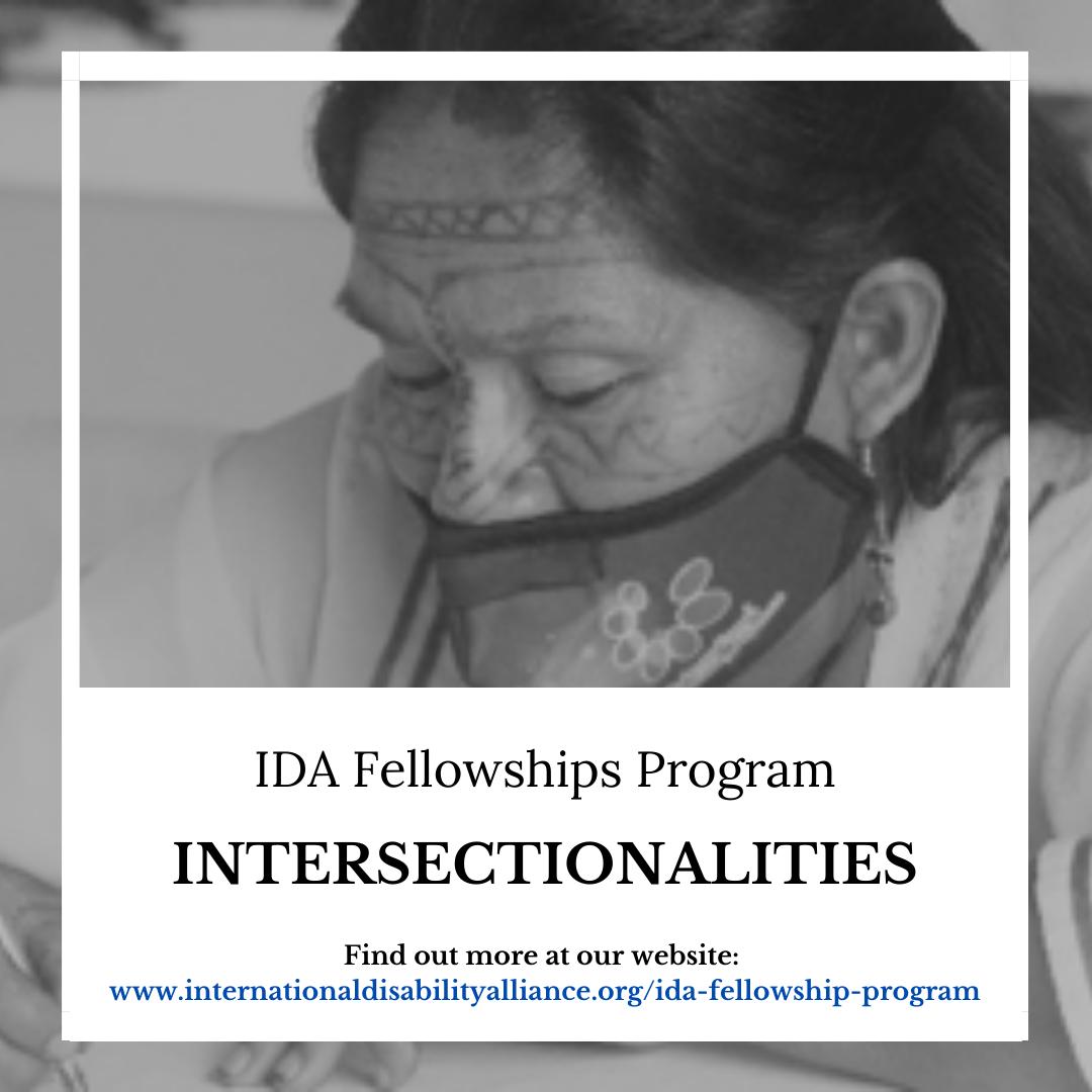 IDA Fellowships Program - Intersectionalities.