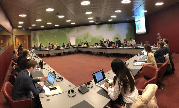 Audience during the HNPW: Charter on Inclusion of Persons with Disabilities in Humanitarian Action:Impact and Expectations