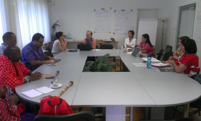 Members of the IPWDGN during technical workshop and EMRIP, mid-July.