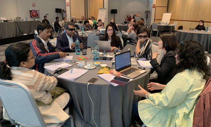 IASC Guidelines workshop participants - one of the roundtables