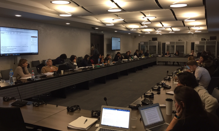IASC Tas Team, December 2018, Geneva