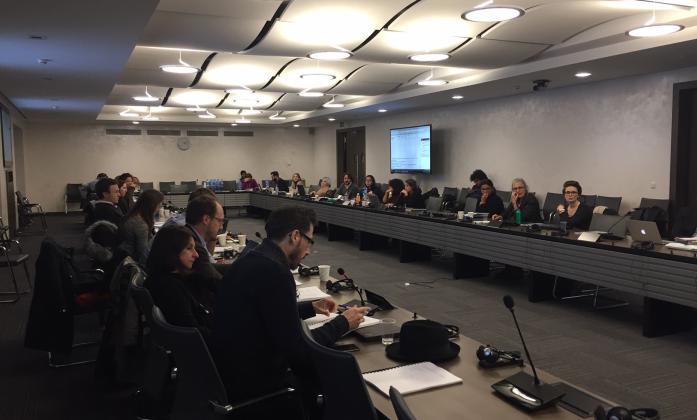 IASC Task Team during consultation in Geneva