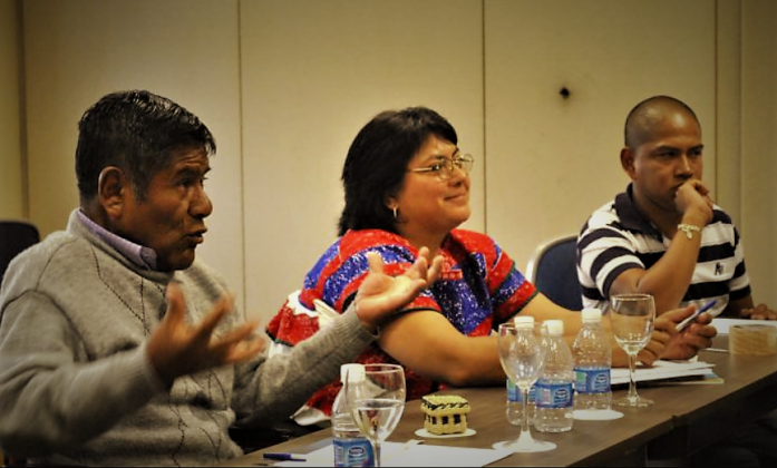 Latin America Network of Indigenous Persons with Disabilities, Sao Paulo 2015