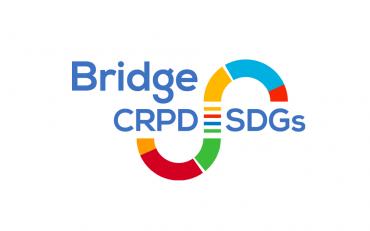 Bridge-SDGs logo