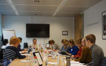 DPOs at the CRPD workshop session in Brussels, October 2017
