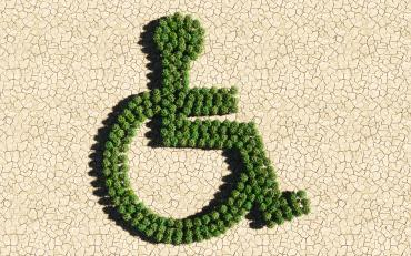 Disability, Displacement, and Climate Action. A draughted land with little forest in shape of wheelchair.