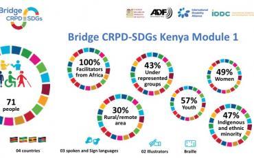 Infographic Bridge participants