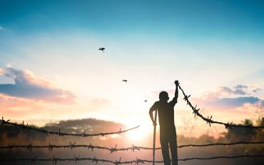 Person holding barbed wire with the sun setting and birds above