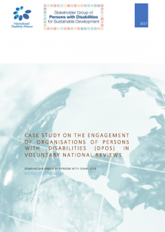 Cover page of the draft version of the Global VNR DPO Report