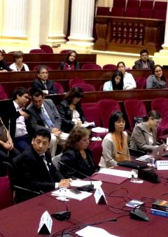 Peru Parliament Session during 2015 Follow up mission