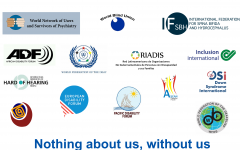 14 Members of the International Disability Alliance
