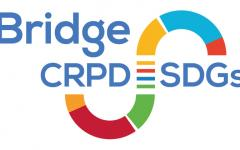 The Bridge CRPD SDGs logo