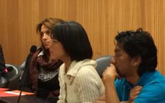 Ms Silvia Quan, IDA´s Senior Advisor on Human Rights intervening in the debate.